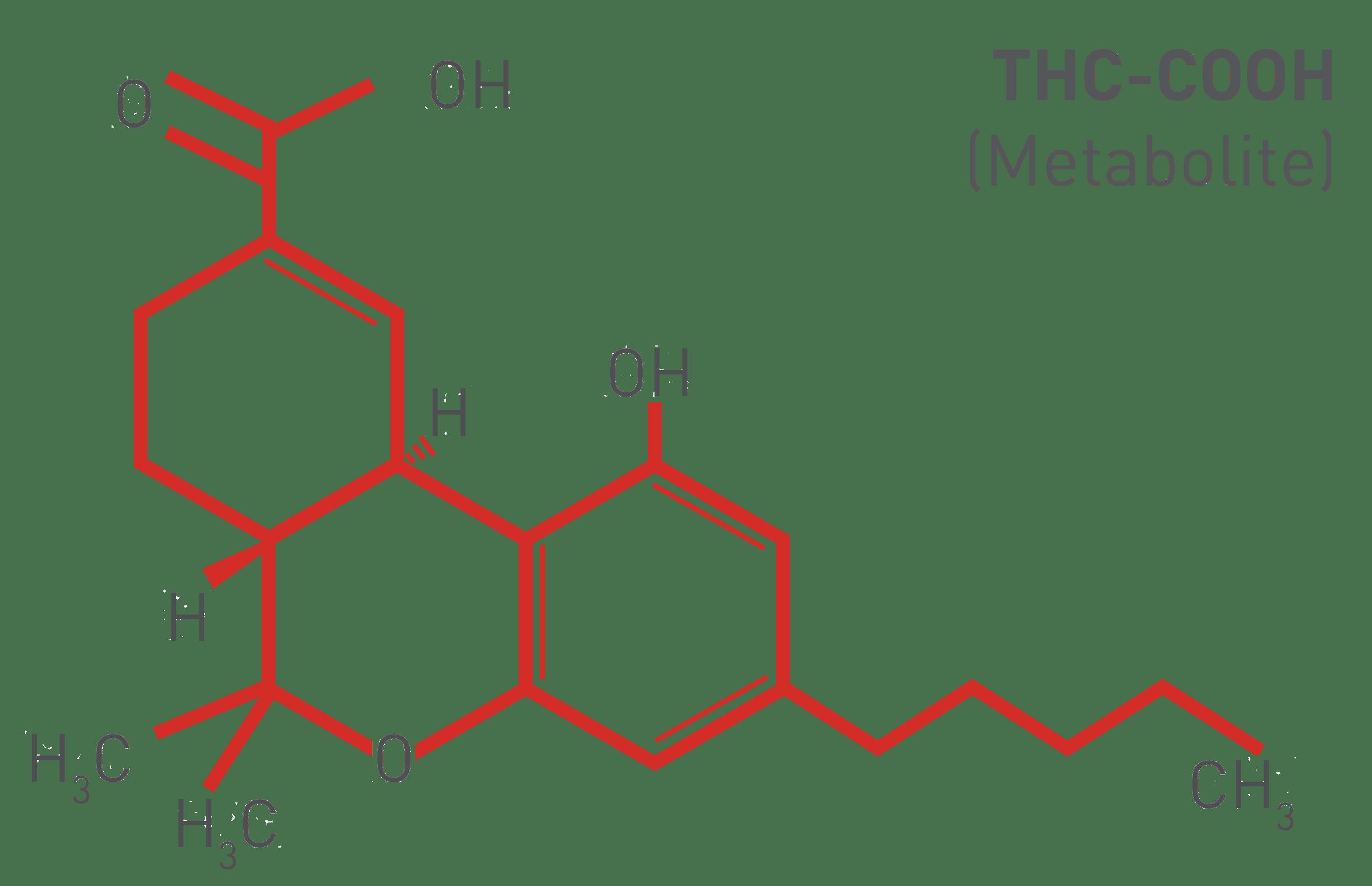 THC-COOH marijuana metabolite